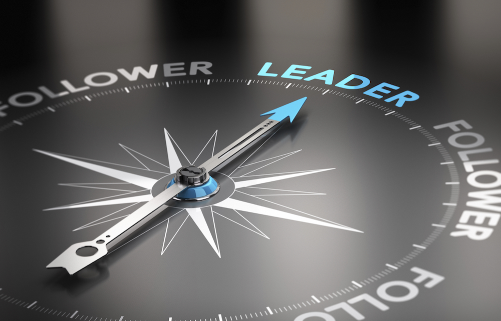 12 Characteristics of Effective Non-profit Leaders